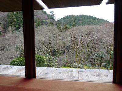 冬の京都ハイキング 京都トレイル 高雄~嵐山