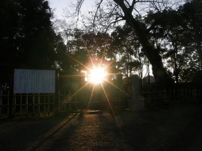 早朝ウォーキングでご来光と鷲宮神社に初詣