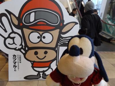 グーちゃん、川崎競馬場で今年を占う!(乳、いやん計画とは・・・。編)