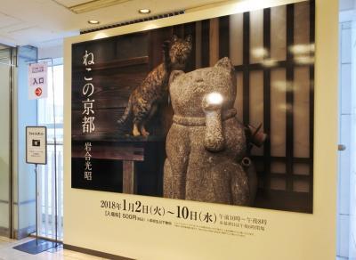 岩合光昭 写真展 ねこの京都@そごう神戸店
