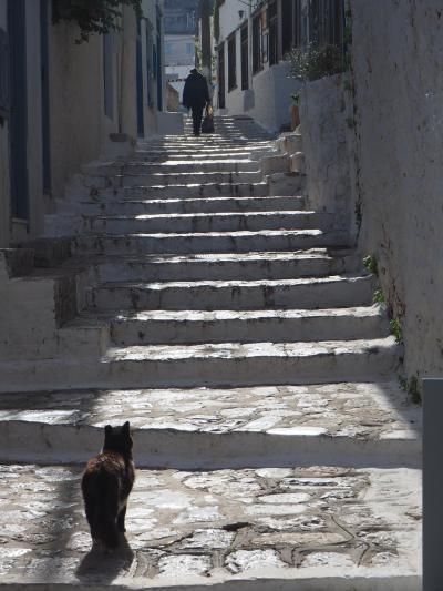帰国前にアテネから日帰りイドラ島