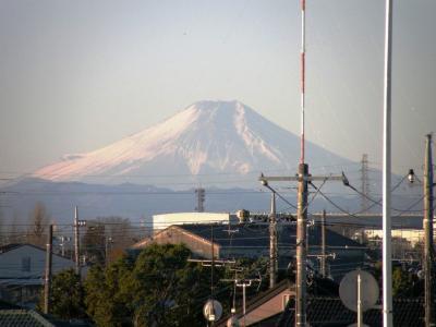 正月に相応しい富士山を見ながらリハビリ早朝ウォーキング