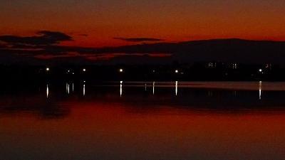 早朝散歩 瑞ヶ池へ出かけましたが、雲があつく日の出は無理でした。