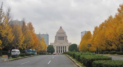 東京国会議事堂周辺の紅葉