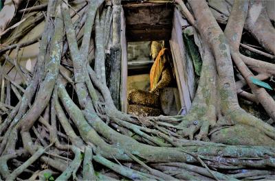 タイ 水上市場アンパワーからのプチトリップ ちょっとインスタ映えしに「ワット・バンクン」に行ってみた オッサンネコの一人旅