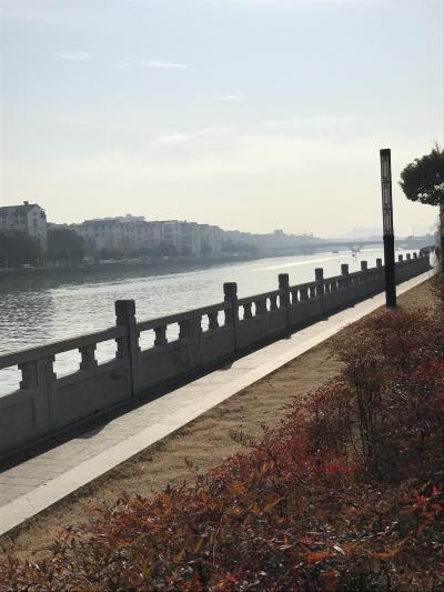 えっ!今度は上海・無錫・蘇州3泊4日激安モニターツアーだって?私は気が進まないけど夫は安くてお得なのが大好き!ついて行くしかない。(3日目)
