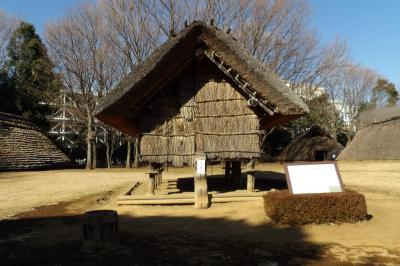 大塚遺跡(横浜市都筑区大棚西)