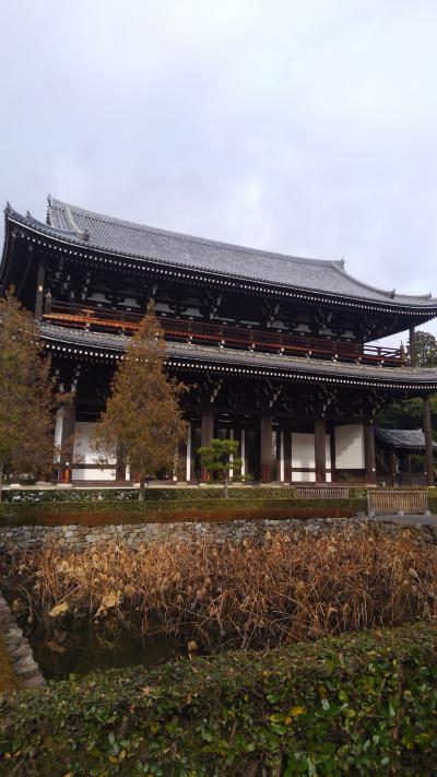 新春京都、まったり旅行1