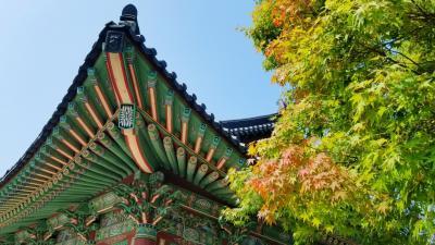 ★韓国地方一人旅★初めての釜山1日目は都会の喧騒を離れて梵魚寺(ポモサ)へ……