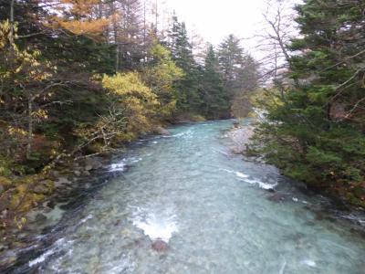 晩秋の上高地♪ Vol16(第3日) ☆田代池へ初雪の中を優雅に歩く♪