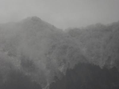 晩秋の上高地♪ Vol17(第3日) ☆初雪の「田代池」♪