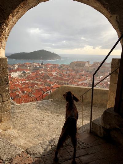 格安でバルカン半島イッテQドライブ旅  クロアチア編