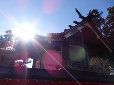 「おいぬ様」信仰の武蔵御嶽神社で戌年の初詣