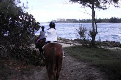 シーサイド乗馬体験