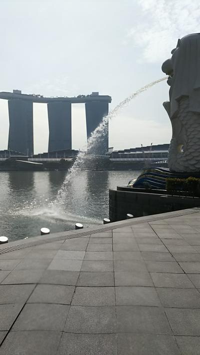 母娘二人旅~初シンガポール