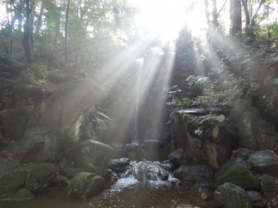 成田山新勝寺に詣でて、「川豊」で鰻をいただき、成田の温泉「大和の湯」でゆったりしてきました。
