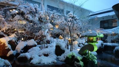 *真っ白な雪世界!1日目は月岡温泉『泉慶』に泊まる新潟・山形旅行**