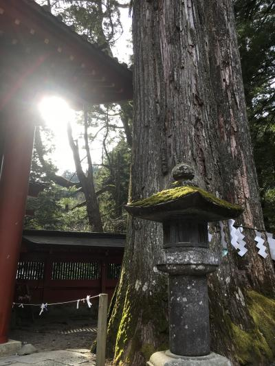 日光 2018 1月 二荒山神社に初詣☆