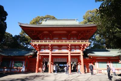 モナリザの初詣・氷川神社