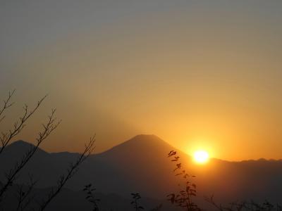 高尾山【日帰り登山】