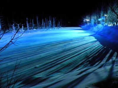 厳冬の白金温泉 ② 青い池の昼と夜