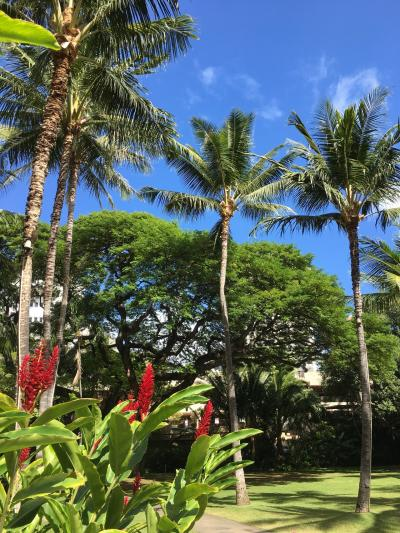 2018年 3泊5日の短すぎるハワイ1人旅