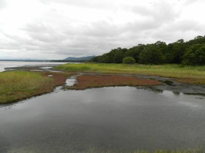 サロマ湖・キムアネップ岬でサンゴ草◆旅仲間と行く初秋の道東《その2》