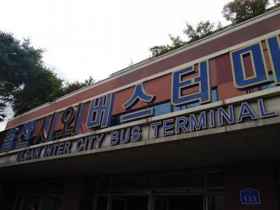 韓国48回目 ~ 蔚山へ ~