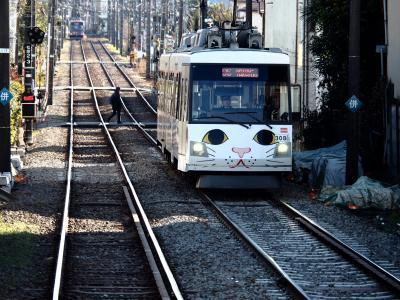 招き猫電車に乗って豪徳寺に行ってきました
