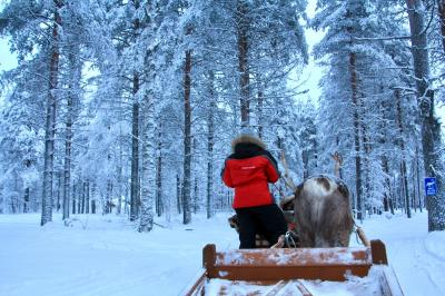 【2017ー2018年】年末年始のフィンランド旅行5 ロヴァニエミ編