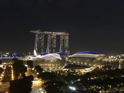 友人が来たら近場の国に遊びに行こう!シンガポール