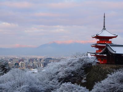 冬のご褒美頂きました!雪の清水寺早朝参拝と夜の河原町あたりと六条新町、招福亭の福そばで福を頂く