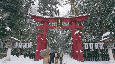 *真っ白な雪世界!最終日は雪積もる彌彦神社へお参り**