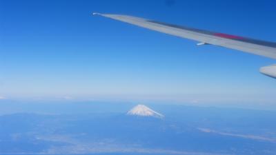 ANAの旅作利用で行く 東京1泊2日の旅【搭乗予定便欠航の為、前便に振り替えで、福岡~羽田移動編】