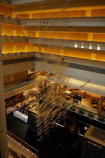 雨季のシンガポール探鳥 その1 ホテル編