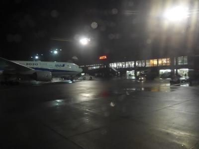 ただ今、JALで移動中(*^-^*) 第四十弾>>>>沖縄での滞在時間24時間を終えて温度差20度の雪降る秋田へ!!羽田空港トランジット!o(^-^)o!!