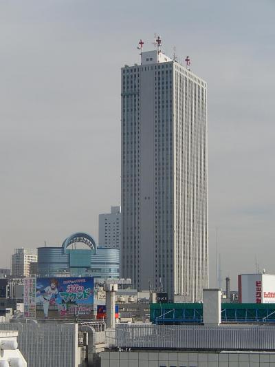 東武百貨店8F屋上デッキ広場から見られる風景