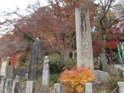 思い立ち高尾山の紅葉を見に行く