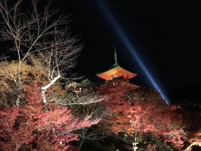 ☆そうだ、京都へ行こう☆ 2017 11月