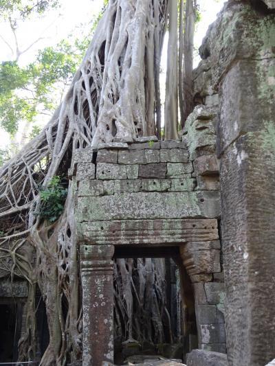 ベトナム、カンボジア旅行 Ⅳ タプロム遺跡,バンテアイスレイ,バンテアイクディ寺院
