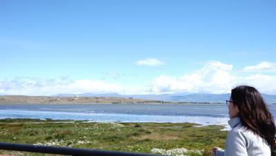 【アルゼンチン旅行記⑥】アルヘンティーノ湖でちょっとサイクリング ブエノスアイレスへ