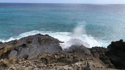 デルタ&SPGで行く!母娘のハワイ旅 2018年1月 3日目
