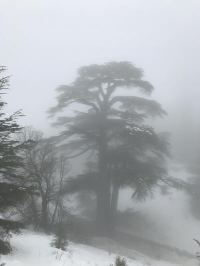 2018年1月 レバノンでレンタカー旅④カディーシャ渓谷編