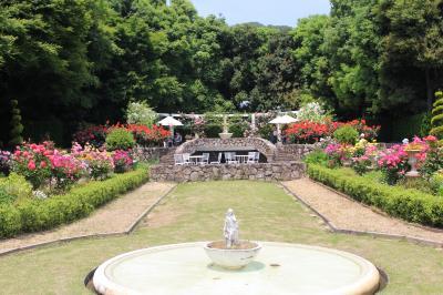 バラの名園散策旅ー須磨離宮公園ー