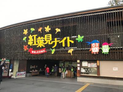 武蔵丘陵森林公園へ(2017年11月)