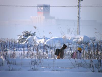 早朝ウォーキングコースで関東地方の大雪の状況をチェック
