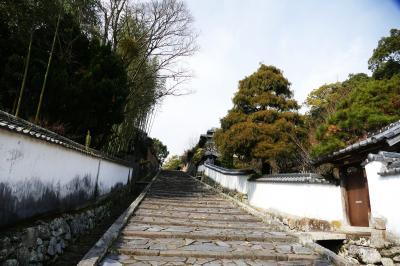 九州の小京都と言われる「杵築(きつき)」を訪ねて