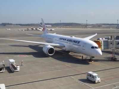 東京⇔シドニーJALビジネスで往復、Part II