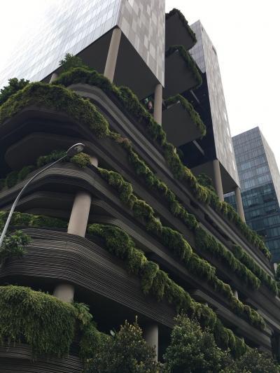 2017年末 ANAプレエコで行く初めてのシンガポール パークロイヤルオンピッカリング宿泊Vol.3