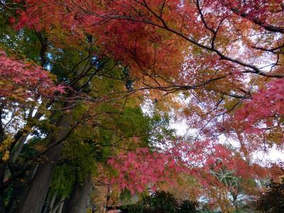02.仙石原 長安寺の紅葉を見る箱根日帰り 紅葉の長安寺散策その1
